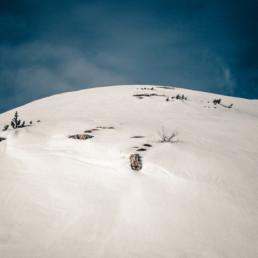 A_Minimal_Landscape-0004
