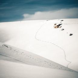 A_Minimal_Landscape-0010