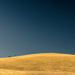 A_Minimal_Landscape-0013