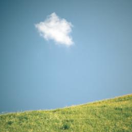 A_Minimal_Landscape-0015