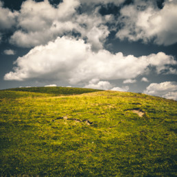 A_Minimal_Landscape-0023