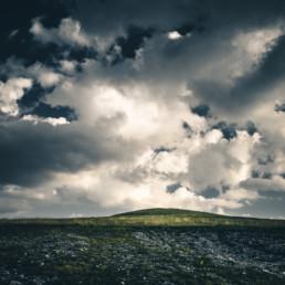 A_Minimal_Landscape-0024